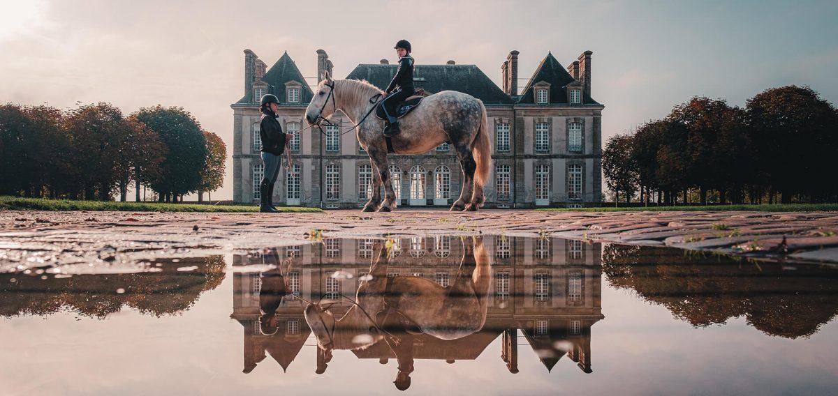 Cheval devant Haras du Pin Normandie - Experience