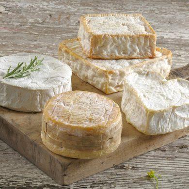 De route des fromages AOP, op zoek naar de lekkerste kazen
