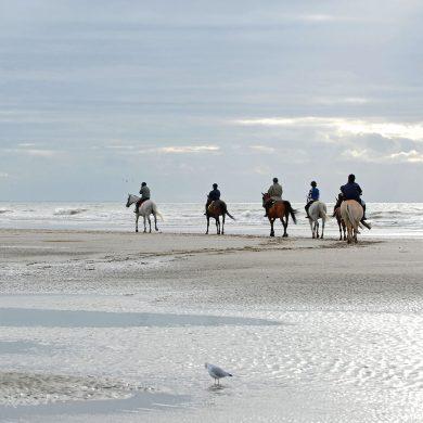 Paardrijden op het strand, waar kan dat?