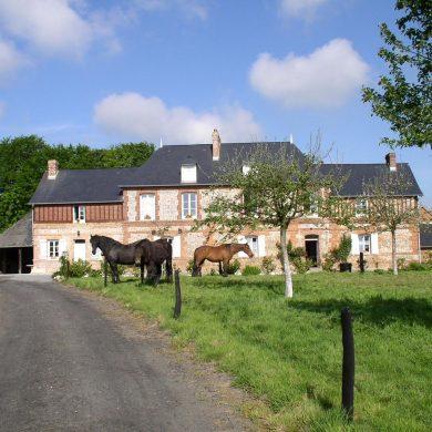 Een weekend in een huis (en uw paard mag mee!)