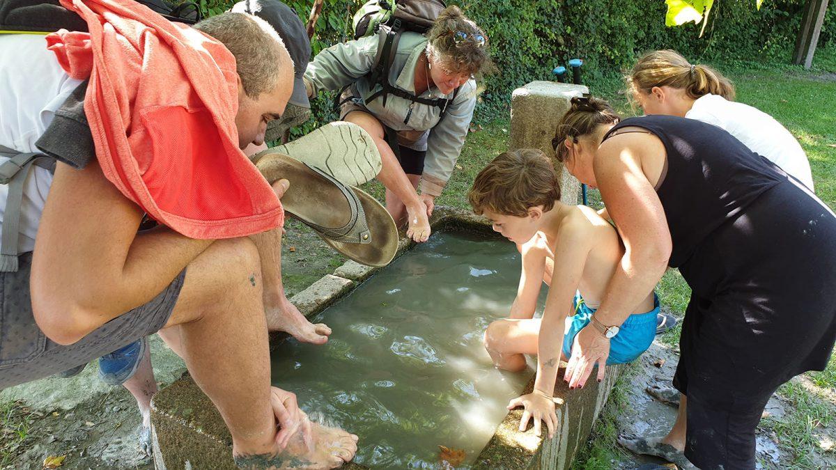 immersion nature en baie du Mont-Saint-Michel en famille - expérience