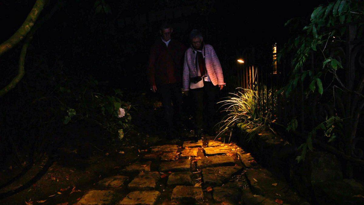 Nocturne au jardin d'Agapanthe
