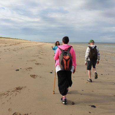 'Opnieuw' leren lopen in de baai van de Mont Saint-Michel